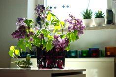 dark lilac vase Alvar Aalto, Space Furniture, Tablescapes, Flower Arrangements, Lilac, Vase, Flowers, Floral Arrangements, Table Scapes