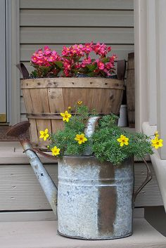 Watering Can Pot