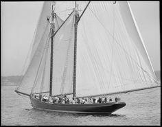 Fishing schooner Thomas S. Gorton | Flickr