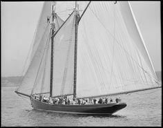 Fishing schooner Thomas S. Gorton | Flickr