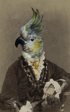 "Untitled by British artist, photographer & writer Charlotte Cory (b.1956) ""best known for her Visitoriana - a complete, fantastical, wholly convincing alternative 19th Century. A post-Darwinian universe of reworked, recycled, collaged and montaged Victorian photography and taxidermy in which the animals are clearly in charge."" Text from the artist's bio on her site. via Body of Art"