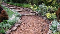 Planting a path --sections of plants to entice one to start the journey and continue on.