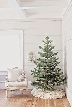 In love with this beautiful modern tree and chair setting. Simple and minimalistic.