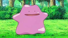 Pokémon GO: Por fin podremos atrapar a Ditto