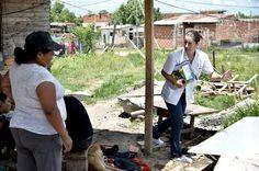 Controlan con internación a embarazadas con dengue Información General