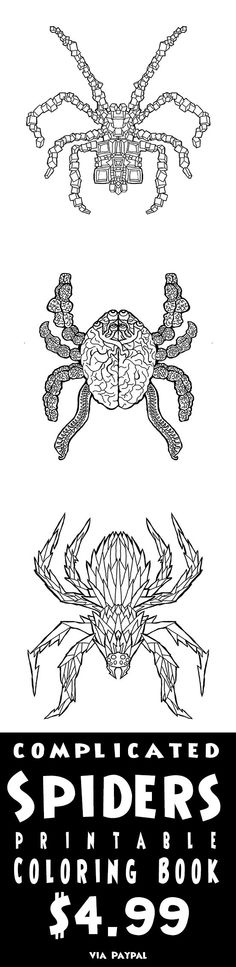 Print your own Spider Coloring pages Great for Halloween - print halloween decorations