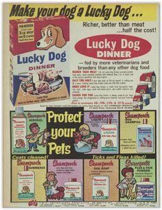 Lucky Dog Pet Food Magazine Advertisement Ad January 1970 Vintage Retro