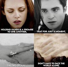 Funny Twilight Quotes, Twilight Jokes, Twilight Wolf, Twilight 2008, Twilight Edward, Twilight Breaking Dawn, Twilight Cast, Twilight Movie, Twilight Poster
