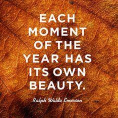 Favorite Quotes, Best Quotes, Love Quotes, Fall Quotes, Summer Quotes, Peace Quotes, Happiness Quotes, Short Quotes, Wisdom Quotes