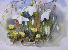 SPRING SNOWDROPS AND WINTER ACONITE Watercolor Journal, Watercolour Painting, Watercolor Flowers, Watercolours, Spring Blooms, Spring Flowers, Drawing Projects, Bulb Flowers, Flower Pictures