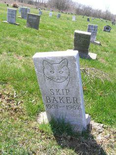 Skip Baker Pet Cemetery Circleville, Ohio Pet Cemetery, Cemetery Headstones, Old Cemeteries, Graveyards, Tombstone Epitaphs, Unusual Headstones, Halloween Arts And Crafts, Creepy Ghost, Memento Mori