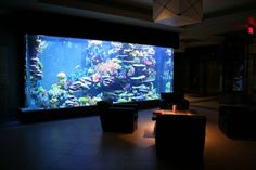 Top 10 Saltwater Fish Tanks - Rate My Fish Tank. OMG! I so want this!