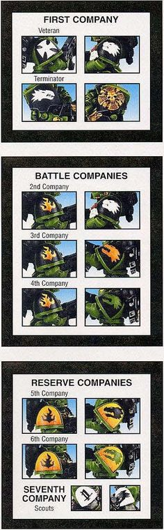 """Résultat de recherche d'images pour """"Salamanders companies"""""""