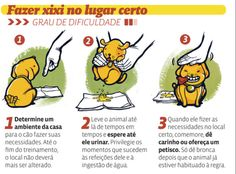 Dica: Faça você mesmo!  Xixi no lugar Certo :D #petmeupet #adestramento