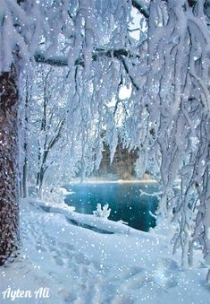 """""""If a picture is worth a thousand words, so say it with a picture. Winter Christmas Scenes, Merry Christmas Gif, Christmas Scenery, Christmas Art, Beautiful Winter Scenes, Beautiful Photos Of Nature, Beautiful Gif, Winter Images, Winter Pictures"""