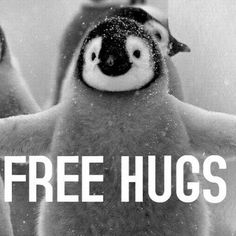 LIFE HACK: When in doubt, hug it out⛄️ #hug #hugs #quotes #quote #tumblr #black #and #white #blackandwhite #penguin #free #lifequotes #picoftheday #picture #like4like #likeforlike #instahappy #happy #tuesday #instagood #instagram #instadaily #insta #instanature #instalike #instamood