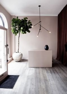 Pale pink walls, burgundy velvet curtains - gorgeous. paint: F&B pink Ground