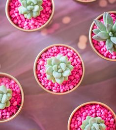 Beacon Street Chic | Cinco de Mayo Party Inspiration | http://beaconstreetchic.com