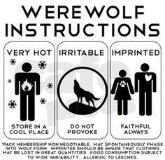 werewolf instructions