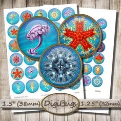 Sea Animals, Digital Collage Sheet, 1.5 inch Circles, 32 mm, 38 mm, Starfish Jellyfish Images, Instant Download, Printable Sea Images, b4 Jellyfish Images, Collage Sheet, Digital Collage, Under The Sea, Starfish, Circles, Decorative Plates, Printable, Unique Jewelry