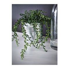 FEJKA Artificial potted plant, Succulent - IKEA