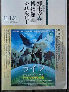 201211-201301 命をつなぐ物語ライフ 府中の森博物館  http://youtu.be/sIoFigkSR0k