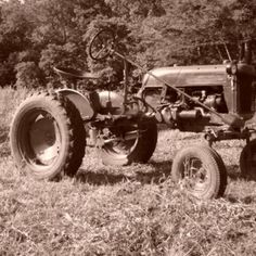Do you think Farmall Cub in the field deserves to win the Steiner Tractor Parts Photo Contest?  Have your say and vote today for your favorite antique tractor photos!