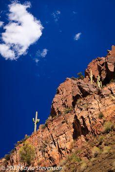images about Arizona Western on Pinterest