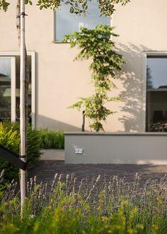 www.buytengewoon.nl kindvriendelijke-tuinen onderhoudsvriendelijke-leeftuin-met-niveaus-in-amsterdam.html