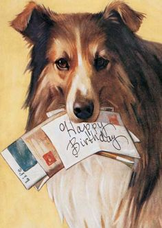 Dog with Mail Birthday Card | Birthday Greeting Cards