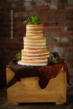 Rustic Naked Wedding Cake=LOVE this...haven't seen something like this before.