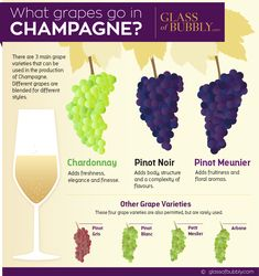 Brandy and Wine. Top Tips And Advice For Picking The Perfect Wine. There is much to know about wine, from which goes with a meal, to which wine is best for an event. Types Of Champagne, Sweet Champagne, Champagne Brands, Wine Infographic, Wine Facts, Wine Chart, Prosecco Cocktails, Martinis, Recipes