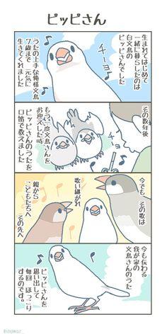 Pretty Animals, Cute Little Things, Cute Birds, Anime Art, Japan, Cartoon, Comics, Illustration, Funny