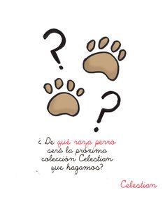 El perro protagonista de la próxima colección Celestian lo decidís vosotros! Vota en: http://www.celestianshop.com/cuestionarioRazaPerro.html #perro #perros  #pinterest