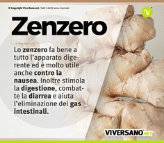 Ginger: what& the use? Here are properties, benefits, use and contr .- Zenzero: a cosa serve? Ecco proprietà, benefici, uso e controindicazioni Stimulant of the immune system it has been used by Asian populations for millennia to fight cold and fever. Healthy Mind, Healthy Habits, Healthy Choices, Healthy Recipes, In Natura, Health And Wellness Quotes, Keto Nutrition, Juice Plus, Greens Recipe