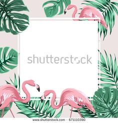 Exotic tropical border frame template with bright green jungle palm tree monstera leaves and pink flamingo birds. Square promo banner layout. Summer sale promo poster. Vector design illustration.