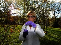 PLANTS THAT CLEAN UP EXPLOSIVES-CONTAMINATED SOIL & WATER