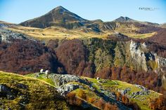 Autumn Lepushe. Kelmend. Shkoder. Albania  #lepushe #kelmend #selce #vajushe #shkoder #theth #canyon #tirana #albania #river #discoveralbania #explore #canon_official #national_geographic #canonphotography #nat_geo #canon #canon5dmarkiii #canonlens #LetsExplore #underwater #canonphoto #canonteam #nature #landscape #photooftheday #instacool #visitalbania #fationplakuphotography #albaniaturism — at Lëpushë.
