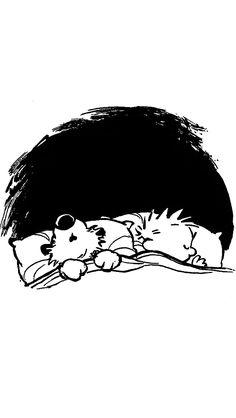 Calvin & Hobbes - Bill Watterson