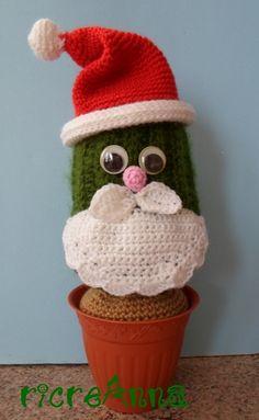 cactus di natale1