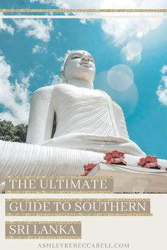 Read my ultimate 11 day Sri Lanka Itinerary! It includes everything you need to know & the top 4 cities; Kandy, Ella, Yala and Bentota. Asia Travel, Time Travel, Sri Lanka Itinerary, Wild Elephant, Take Off Your Shoes, Most Luxurious Hotels, Tourist Sites, Rainy Season, Ultimate Travel