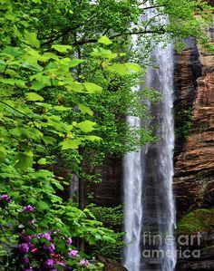 Toccoa Waterfalls in Toccoa, Georgia