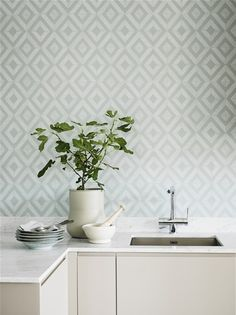 Wallpaper Shades Tourmaline from the collection Shades of Chalk. A beautiful one-colored wallpaper in gray-green tones with an aged patina from Boråstapeter. Classic Wallpaper, Grey Wallpaper, Kitchen Wallpaper, Dining Room Inspiration, Floor Rugs, Green And Grey, Interior Decorating, Feelings, Home Decor