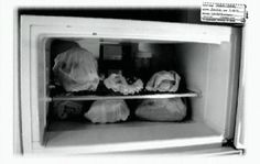 These Crime Scene Photos of Jeffrey Dahmer's Apartment Are Horrific, Sinister and NSFW | moviepilot.com
