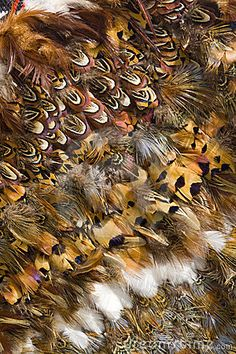 Close up of Maori feather cloak by Patricia Hofmeester, via Dreamstime Flax Weaving, Feather Cape, Flax Flowers, Maori People, Maori Designs, Nz Art, Maori Art, Native Style, Feathers
