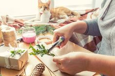 Woman wrapping eco Christmas gifts on wooden table by Victoria Kondysenko on 500px