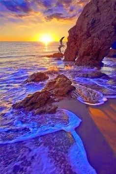 Source: art of nature Amazing Sunsets, Amazing Nature, Beautiful Places To Visit, Beautiful Beaches, Photography Pics, Nature Photography, Beautiful Sunrise, Am Meer, Nature Pictures
