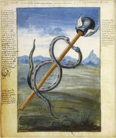 Le Mercure animé (caducée) Alchimie de Nicolas Flamel (1330 ?-1418) Manuscrit à peintures, 395 pages, 23 x 20 cm BnF, Département des Manusc...