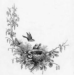 bird nest me as the mama bird number og little birds as number of kids?