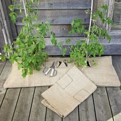 grow bag covers to disguise the ugliness of plastic grow bags. Growing Veggies, Growing Tomatoes, Grow Bags, Deco, Outdoor Gardens, Herbalism, Projects To Try, Make It Yourself, Crafty